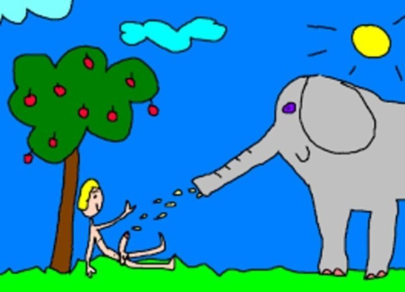 ejakoelefanterekce.jpg