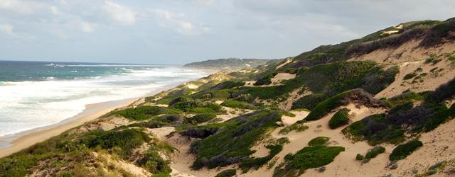 duny porostlé buší dotvářejí kouzlo pobřeží
