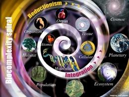 Biokomplexita
