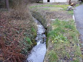Lysolajský potok na dolním toku.jpg