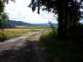 Cesta, vpravo les, na obzoru vrchy.jpg