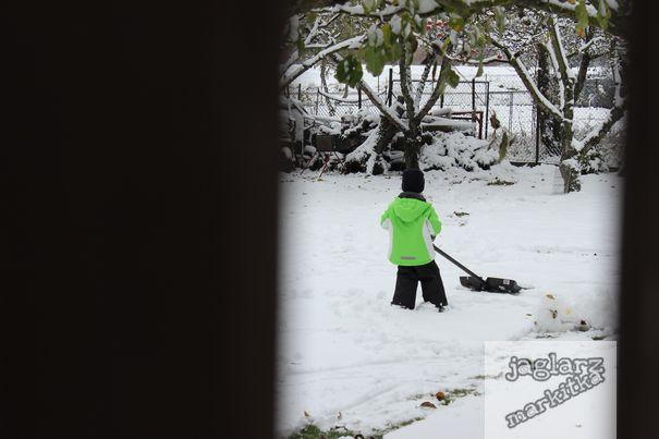 maly-zametac-snehu.jpg