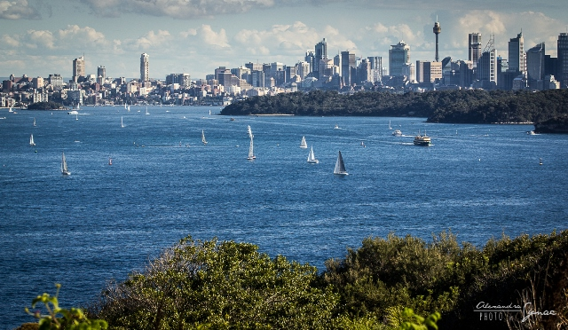 Sydney přístav