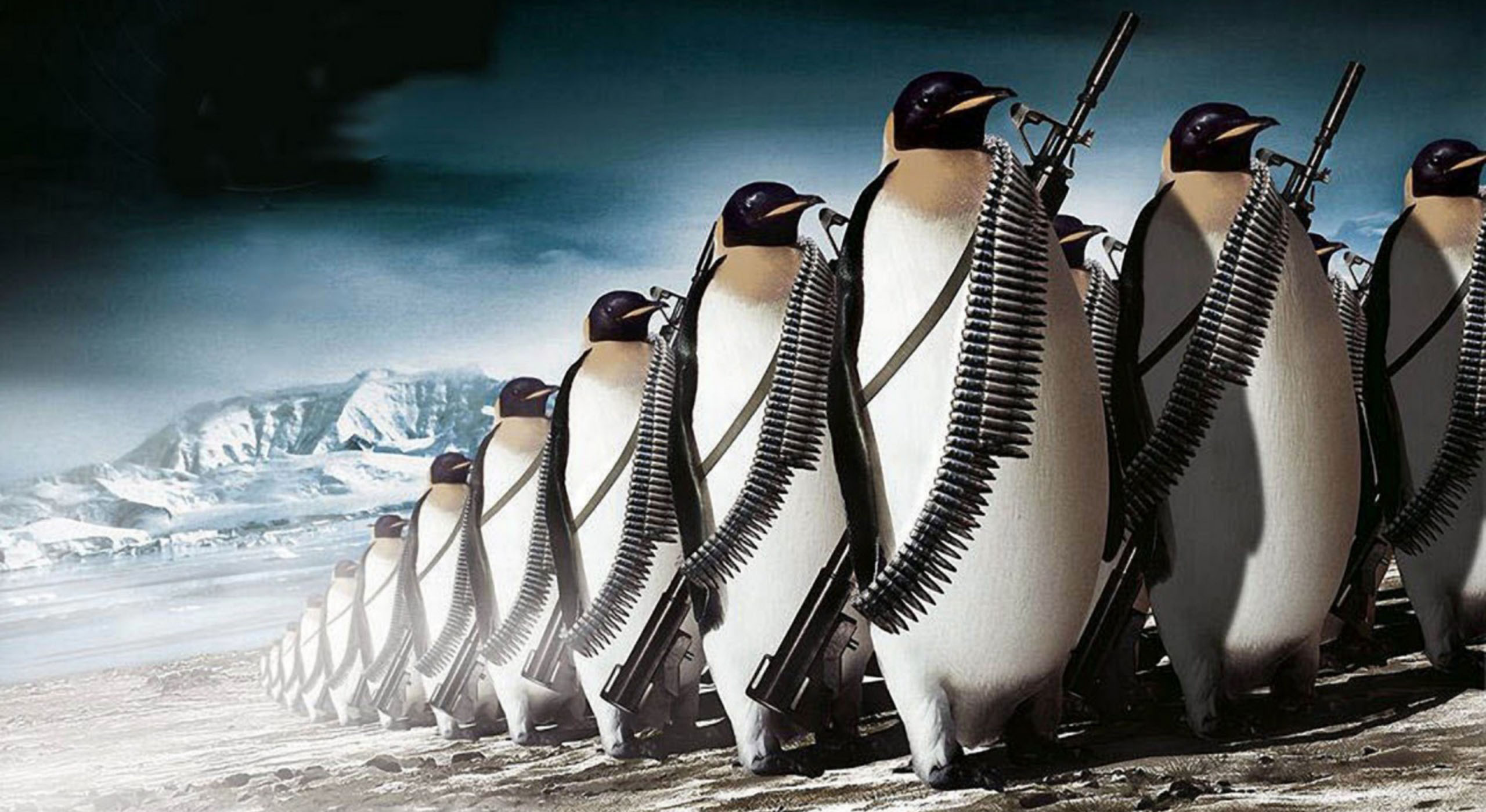 Penguin_War.jpg