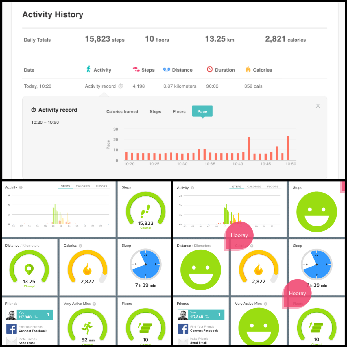 Fitbit a jeho statistiky