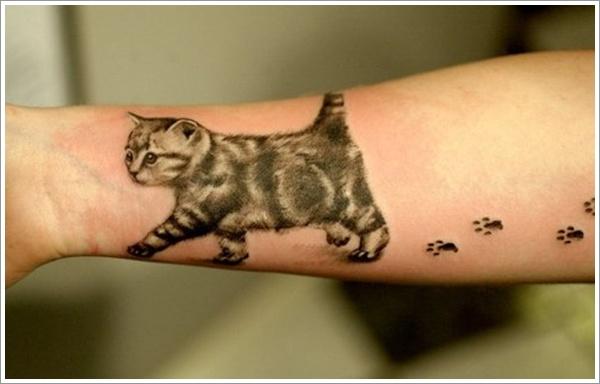 cat38.jpg