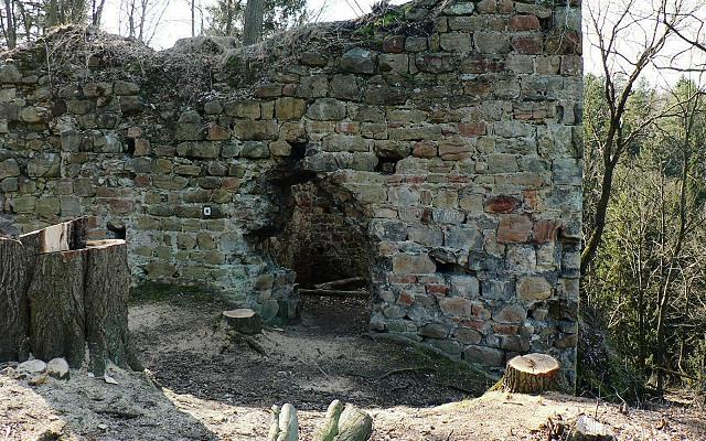 Chudý hrádek, východní stěna paláce