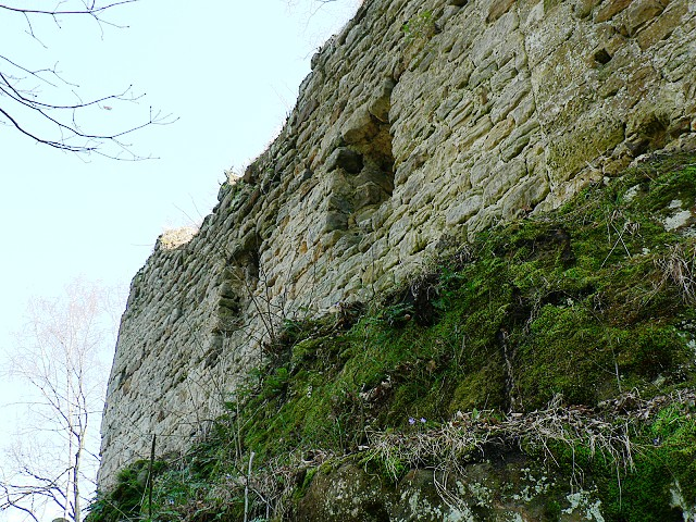 Chudý hrádek, severní stěna paláce