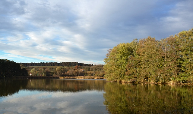 Buškovský rybník
