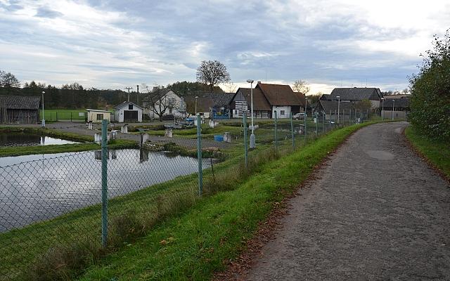 Cesta po hrázi rybníka Komorník, vlevo pod hrází jsou sádky.