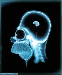 mozekHomera.jpg