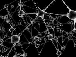 mozekneurony.jpg