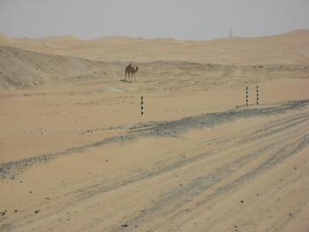 Pouštní zkratka - 30 kilometrů po pískovišti s náhonem na 2 kola