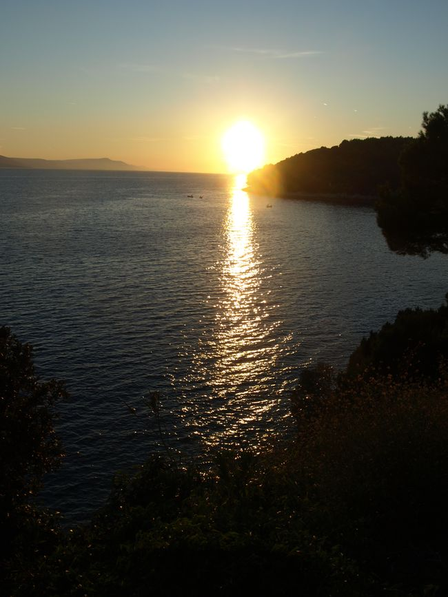 Sun-setVu.jpg