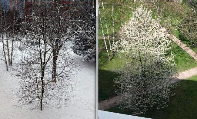 zima-jar2.jpg