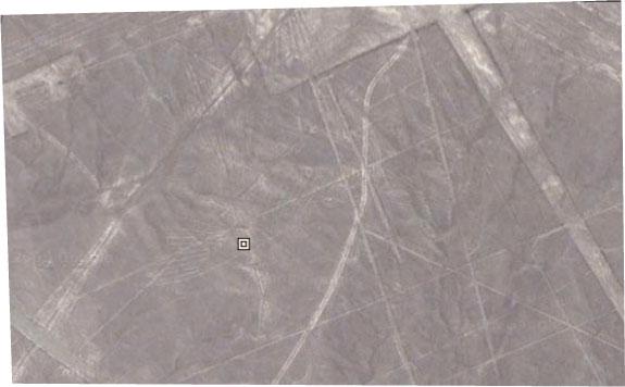 nazca2.jpg