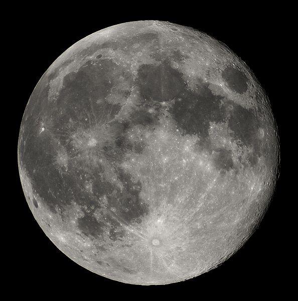 mesic.jpg