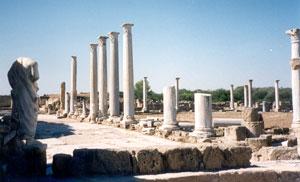 Salamis.jpg