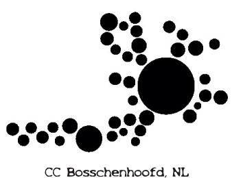 ccbosch.jpg