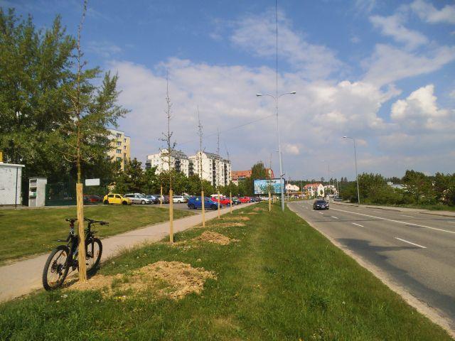 Novolíšeňská - první pás zeleně