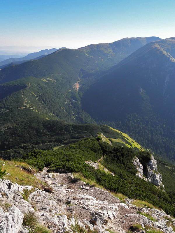 Výhled ze Sivého vrchu na sedlo Pálenica