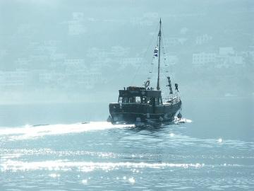Touha vyplouvající v ranním slunci